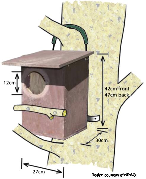 Possum box
